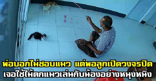 พ่อบอกอย่าเอาแมวมาเลี้ยง ขนมันร่วง แต่เมื่อลูกเปิดดูกล้องวงจรปิด เจอใช้ไม้ตกแมวเล่นกันหนุงหนิง