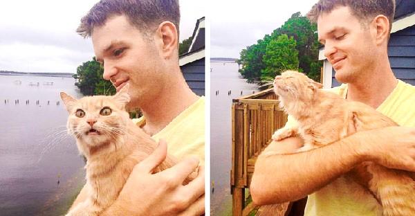 โมเม้นท์เปิดโลกกว้างของแมวเหมียว กับปฏิกิริยาฮาๆที่ได้ออกจากบ้านเป็นครั้งแรก