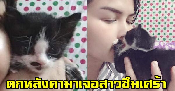 ลูกแมวจรจัดตกหลังคามาเจอสาวโลกส่วนตัวสูง ที่ไม่ชอบสัตว์แถมเป็นซึมเศร้า และเปลี่ยนเธอให้เป็นทาสแมวในพริบตา
