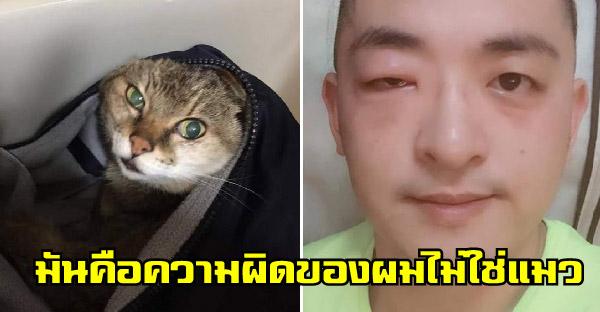 หนุ่มเพิ่งรู้ว่าแพ้แมวหลังจากช่วยชีวิตลูกแมวหลง จึงเปลี่ยนชีวิตทุกอย่างจนเลี้ยงนานถึง 21 ปี