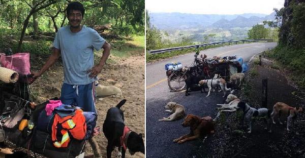ชายช่วยสุนัขจรกว่า 500 ชีวิต ขณะเดินทางข้ามประเทศด้วยซาเล้งคันเดียว