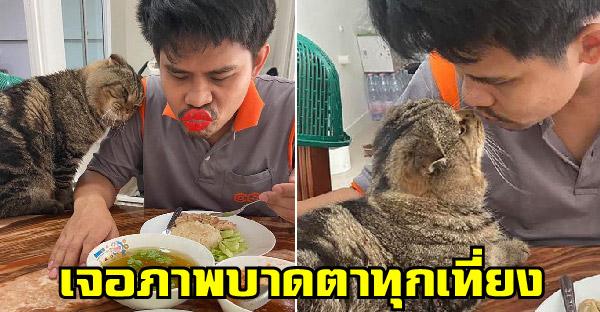 เมื่อสามีกลับมากินข้าวเที่ยงกับเมียน้อยที่บ้านทุกวัน ไม่เห็นใจภรรยาที่มองอยู่บ้างเลย