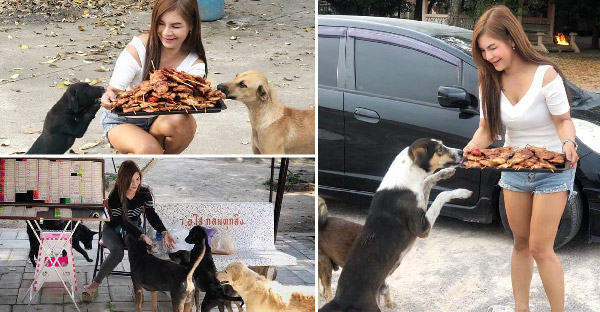 สาวขายล็อตเตอรี่ใจบุญ ซื้ออาหารเลี้ยงหมาจรประจำ ปีใหม่จัดเต็มทั้ง ไก่บด ไก่ย่าง อิ่มกันถ้วนหน้า