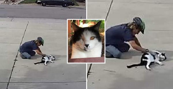 กล้องวงจรปิดเผยความลับของเด็กหนุ่ม ที่มาเล่นกับแมวตาเดียวทุกวัน ถึงแม้เด็กคนอื่นจะไม่กล้าเข้าใกล้ก็ตาม
