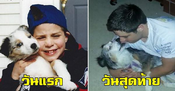 20 มิตรภาพอันอบอุ่นระหว่างสุนัขและเจ้าของ ที่ไม่มีวันเปลี่ยนแปลงตลอดไป