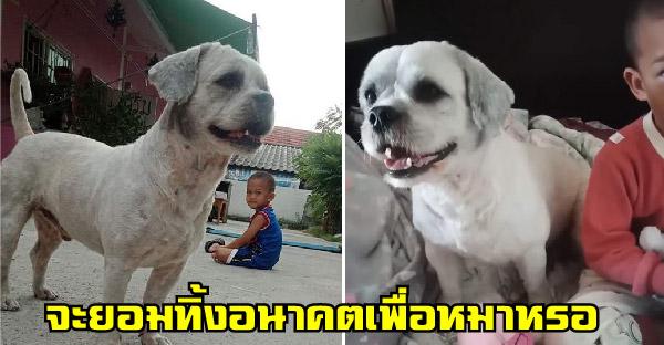 คุณแม่เลี้ยงเดี่ยวไม่ยอมย้ายร้านเสริมสวยไปทำเลดีกว่า เพราะเจ้าของไม่ยอมให้เลี้ยงหมา