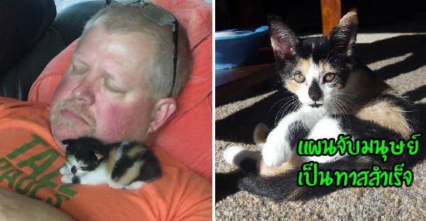 คุณพ่อบอกเกลียดแมวจนไม่อยากจะแตะ ผ่านไปแค่ 2 สัปดาห์นอนหลับหนุนกันมุ้งมิ้งมาก