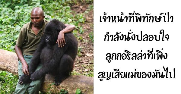 20 สัตว์โลกที่ได้รับการช่วยเหลือจากมนุษย์ และพวกมันสามารถสัมผัสถึงความรักนี้ได้
