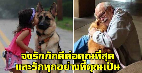 20 เหตุผลชี้ชัดว่าสุนัขคือเพื่อนที่ดีที่สุดตลอดกาลของมนุษย์