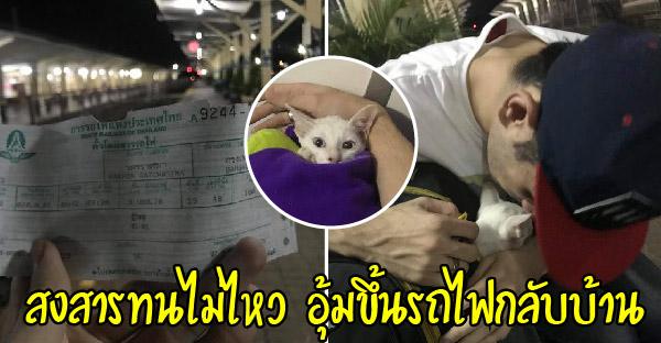 หนุ่มไม่เคยชอบแมวบังเอิญเจอมิ้วน้อยกำพร้า สงสารจับใจทนไม่ไหวคว้าขึ้นรถไฟไปเป็นหนุ่มเมืองย่าโม