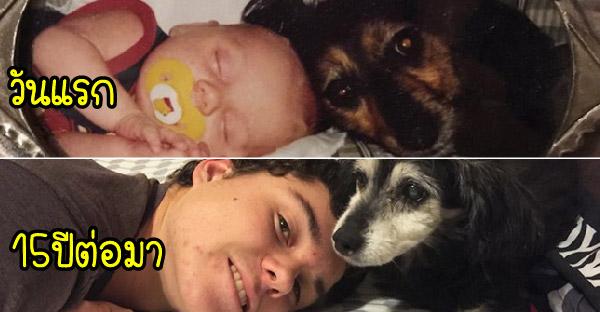 20 มิตรภาพระหว่างสุนัขและเจ้าของ ที่ไม่มีวันเปลี่ยนแปลงตลอดไป