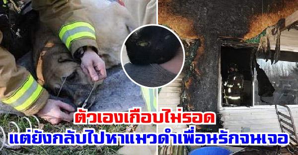 เจ้าตูบหวิดไม่รอดจากไฟไหม้ ก่อนจะเข้าไปหาเพื่อนแมวดำที่หายไปเจออย่างน่าเหลือเชื่อ
