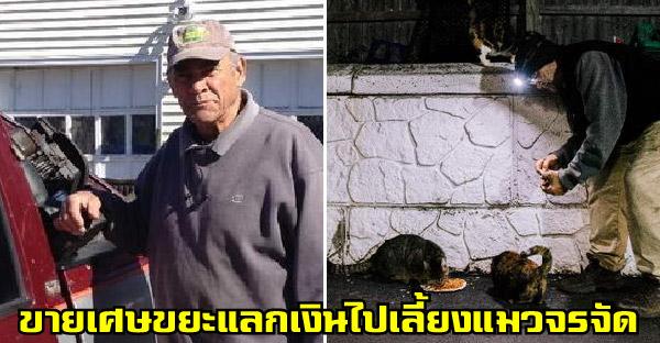 คุณปู่เก็บเศษขยะขายแลกเงิน เพื่อไปเลี้ยงแมวข้างถนนมานานกว่า 22 ปี