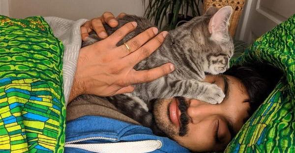 นักวิทยาศาสตร์เผยการเป็นทาสแมว ส่งผลดีต่อสุขภาพมากกว่าที่คิด