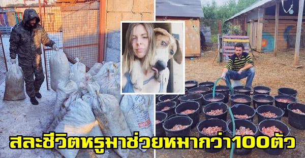 คู่รักสละชีวิตหรูในเมืองหลวง เพื่อไปช่วยสุนัขทุกสายพันธุ์มากกว่าร้อยตัว