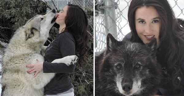 หญิงสาวเป็นโรคเครียดฝังใจ กลับมาหายดีได้เพราะหมาป่าช่วยไว้