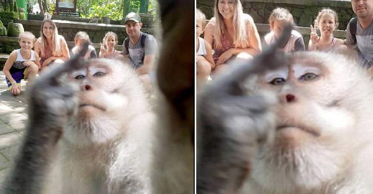 ลิงจ๋อพยายามขโมยถั่วจากไกด์แต่ไม่สำเร็จ จึงแจกกล้วยใส่กล้องแทนเป็นการระบายความแค้นซะเลย