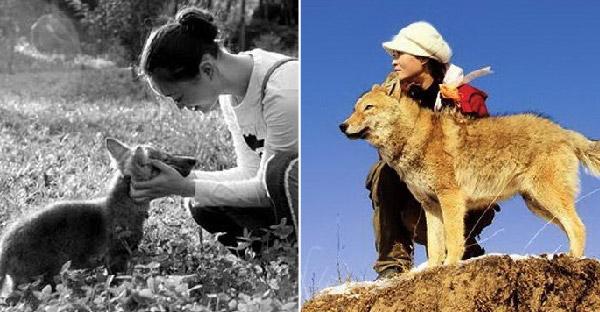 หญิงสาวช่วยชีวิตหมาป่าในวัยเด็ก และมันไม่เคยลืมบุญคุณตลอดชีวิต