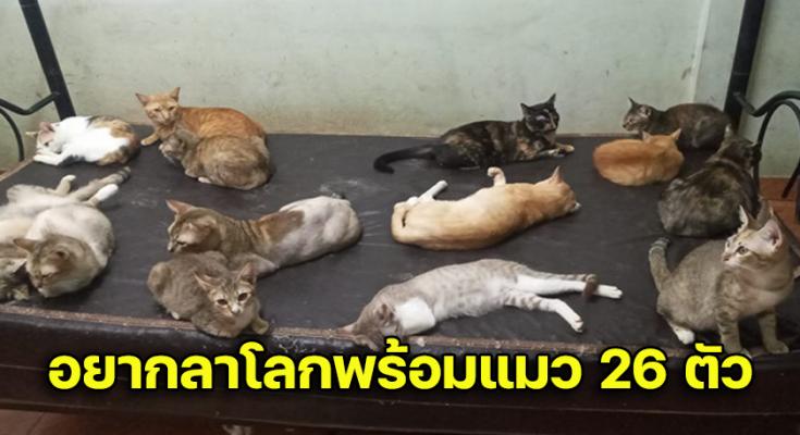 คิดอยากลาโลก หลัง ถูกไล่ออกพร้อมแมว 26 ตัว