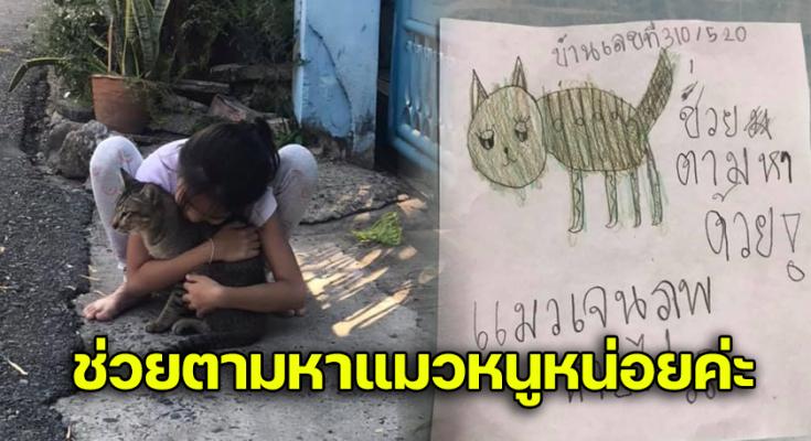 หนูน้อยเสียใจมาก ฝึกวาดภาพแมวจรเพื่อติดประกาศ