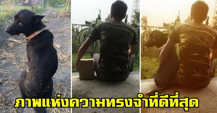 หนุ่มวอนชาวเน็ตช่วยตัดต่อภาพคู่กับหมาสุดรัก หลังน้องจากไปแบบไม่ทันตั้งตัว