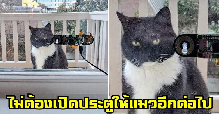 วิศวกรสร้างเครื่องสแกนใบหน้าแมว เพื่อเจ้านายไม่ต้องเสียอารมณ์รอหน้าประตู