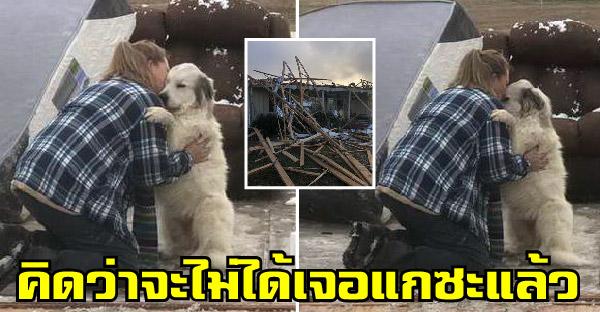 สาวบรรจงจูบสุนัขสุดรักด้วยน้ำตา หลังคิดว่าไม่รอดจากเหตุการณ์ทอร์นาโดถล่มบ้าน