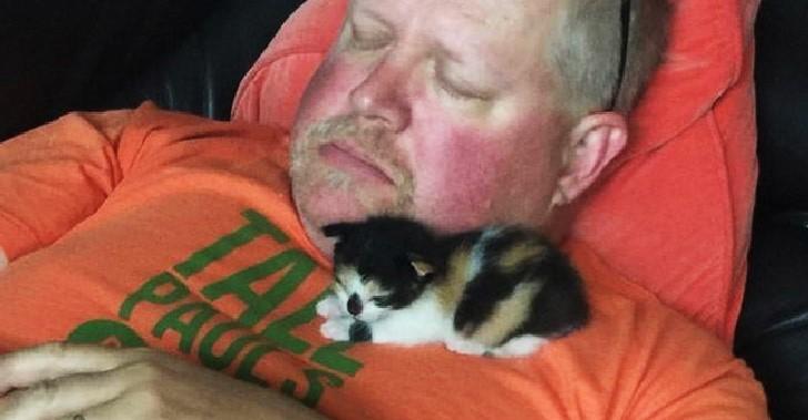 คุณพ่อบอกเกลียดแมวจนไม่อยากจะแตะ ก่อนที่ภาพเดียวจะบ่งบอกทุกอย่าง
