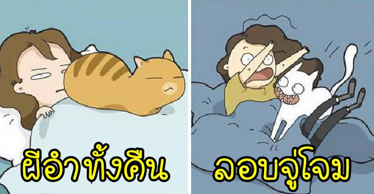 ความจริงอันน่าปวดหัวของทาสแมว แต่ชีวิตกลับมีความสุขมากเหลือเกิน