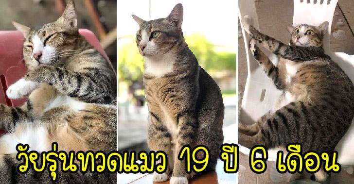 อวดโฉมทวดแมววัย 19 ปี ที่ยังดูเหมือนเด็กวัยรุ่น พร้อมเผยเคล็ดลับการกิน