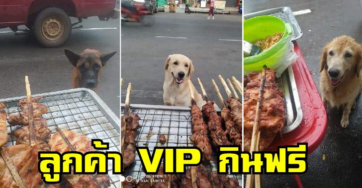 ลูกค้า VIP กินไก่ย่างไม่เคยจ่าย ช่วยทำหน้าที่ต้อนรับ การันตีความอร่อยเพียบ